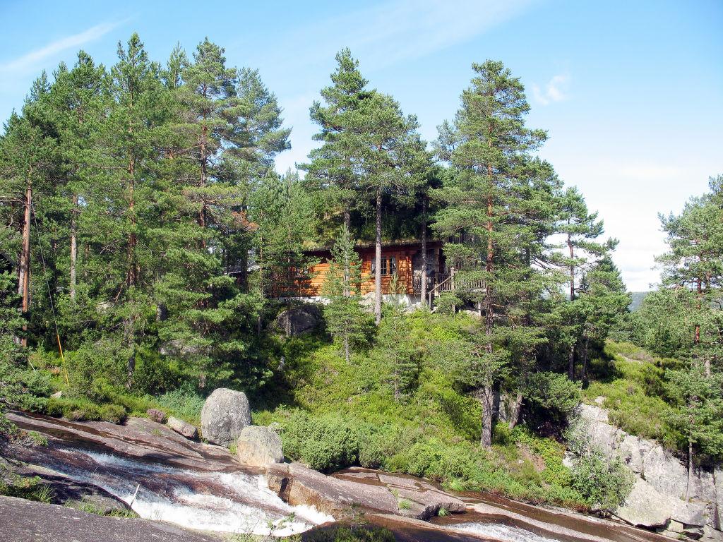 Ferienhaus Knutebu (SOW093) (2648529), Åseral, Agder West, Südnorwegen, Norwegen, Bild 1