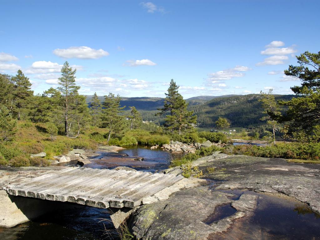 Ferienhaus Trondbu (SOW106) (2037391), Åseral, Agder West, Südnorwegen, Norwegen, Bild 22