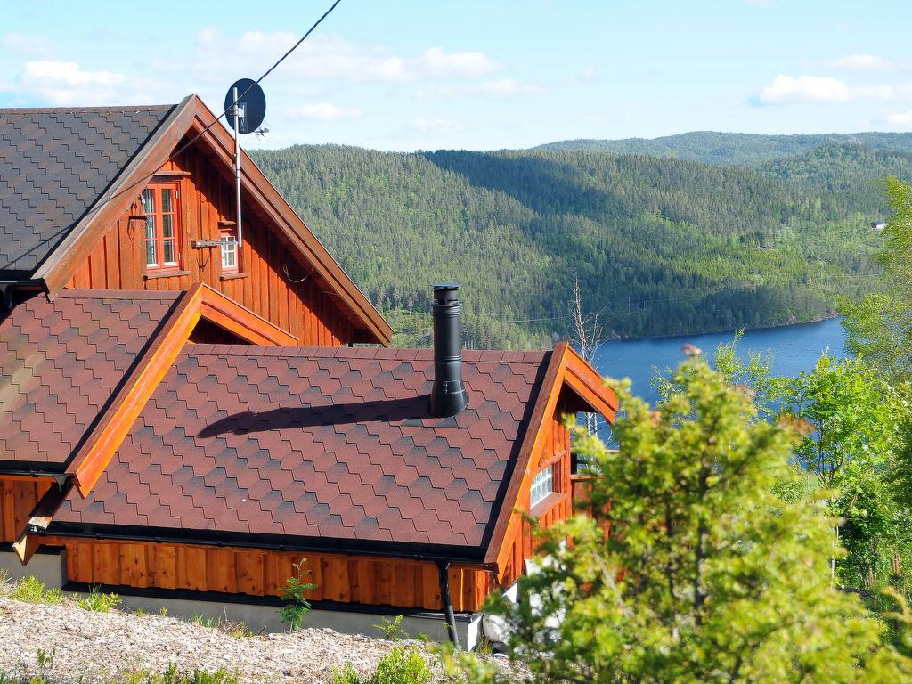Ferienhaus Trondbu (SOW106) (2037391), Åseral, Agder West, Südnorwegen, Norwegen, Bild 1