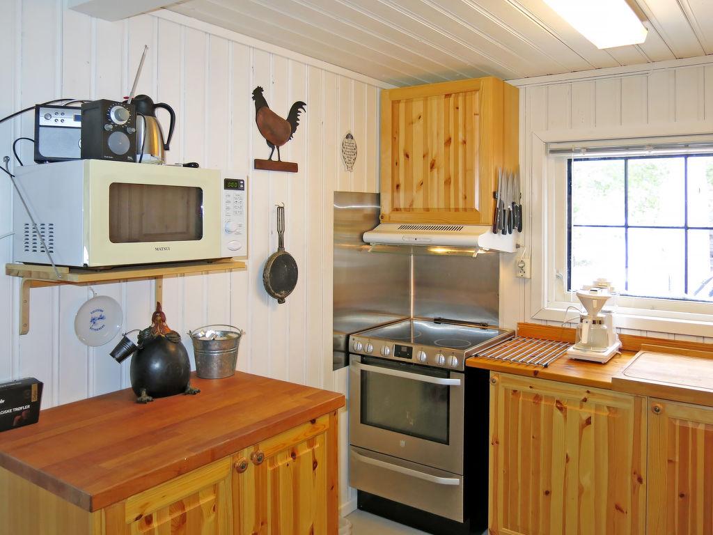 Ferienhaus Logstad (SOO352) (2648536), Hornnes, Agder Ost, Südnorwegen, Norwegen, Bild 4