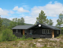 Setesdal - Ferienhaus Hartevatn (SET081)