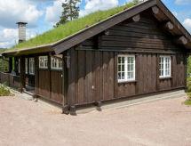 Treungen, Telemark - Maison de vacances Havrefjell (TEM012)