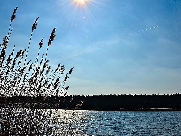 Maciejówka w Ostowie