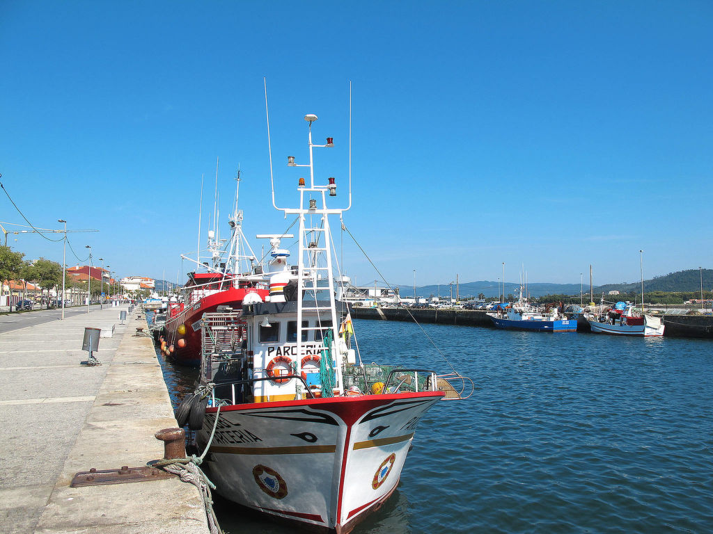 Ferienhaus Ameal (VCO100) (820351), Santa Luzia, Costa Verde (PT), Nord-Portugal, Portugal, Bild 20