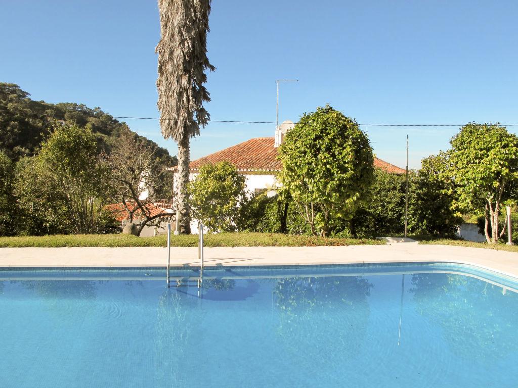 Ferienhaus Oliveiras House (CLE150) (113255), Colares, , Lissabon, Portugal, Bild 19