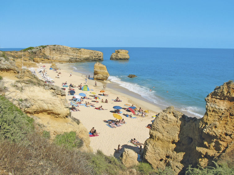 Photo of Estrela Cadente Praia do Castelo