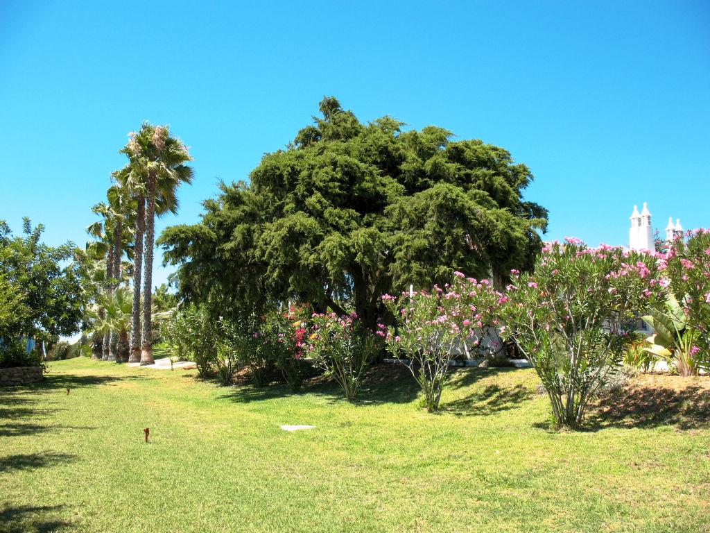 Ferienhaus Luz Romana A1 (TVA 103) (105477), Tavira, Ria Formosa, Algarve, Portugal, Bild 13