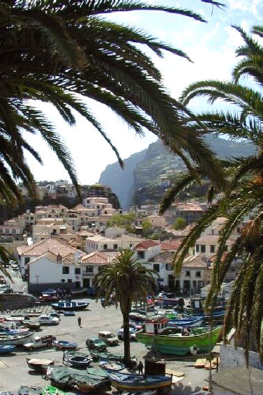 Appartement Vista do Carmo (5p) op Madeira (I-251)