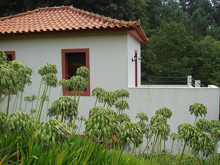 Reihenhaus Madeira/Camacha