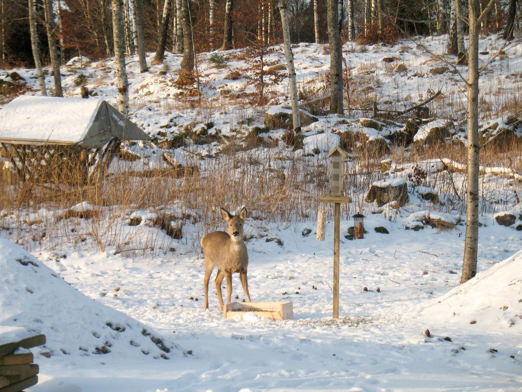 Ferienhaus Komskälet (VGT135) (2648566), Tvärred, Västra Götaland län, Westschweden, Schweden, Bild 16