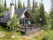 Härjedalen - Maison de vacances Lofsdalen Fjällbjörken (HJD054)