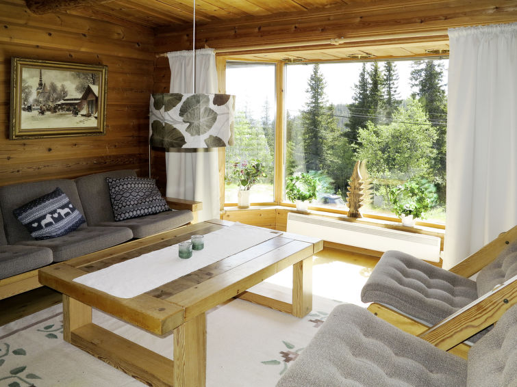 Sälen accommodation chalets for rent in Sälen apartments to rent in Sälen holiday homes to rent in Sälen