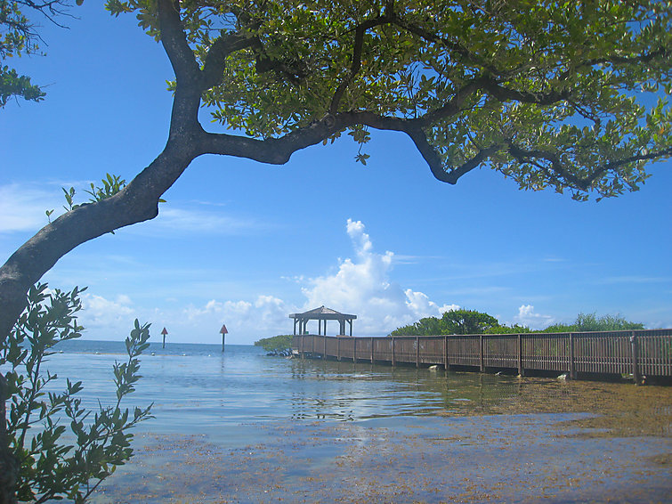 Mangroves - Apartment - Keys