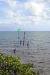Bild 11 Aussenansicht - Ferienwohnung Mangroves, Keys