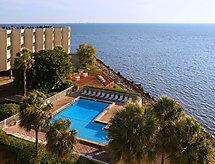 Tampa Waterfront con limpieza y lavadora