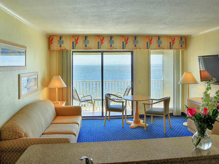 Tampa Waterfront - Apartment - Tampa/Tampa Bay