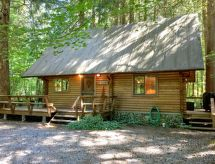 Mount Baker/Glacier - Dom wakacyjny 43MBR A Family Log Home w/ Hot Tub