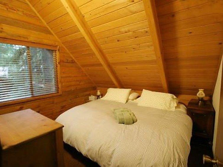 35SL Pet Friendly Cabin near Skiing