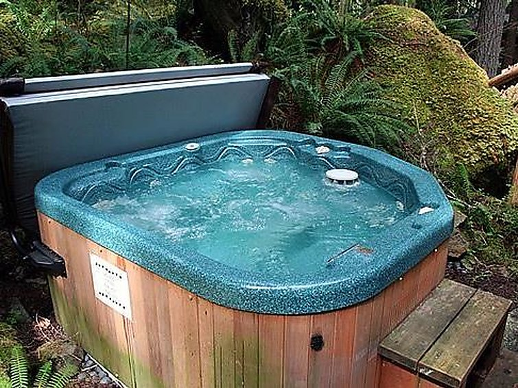 47SL Mountain Cabin with a Hot Tub - 10