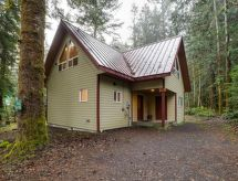Mount Baker/Glacier - Vakantiehuis 50MBR-Upscale Cabin With Hot Tub!