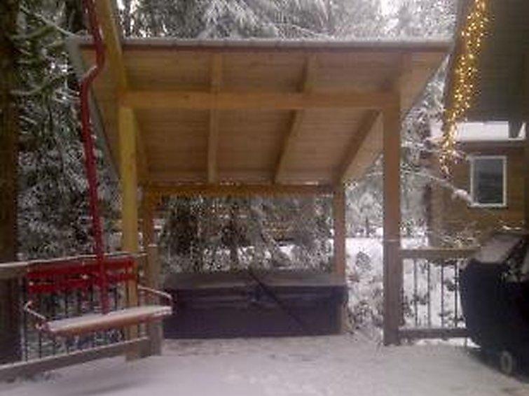 99MBR Woodsy Cabin w/ Hot Tub - Chalet - Mt. Baker